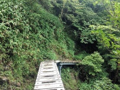 One of many bridges over treacherous spots.