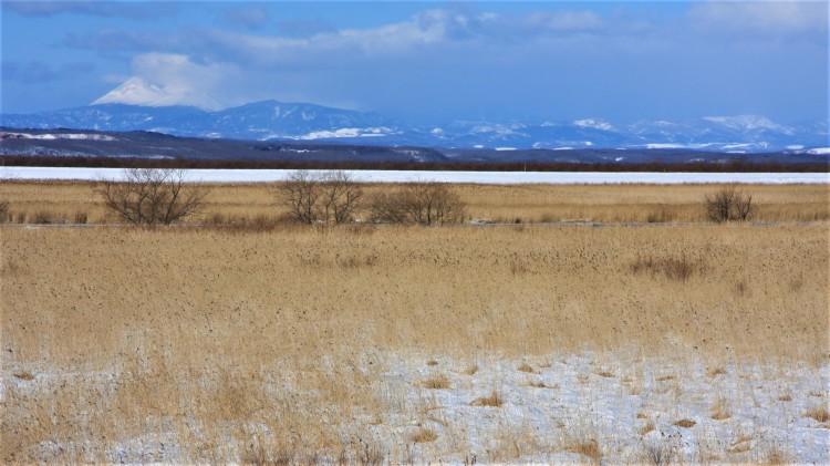 Kushiro_Wetland_winter